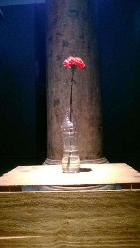 O Cravo Vermelho. que foi distribuído para todas as celas.